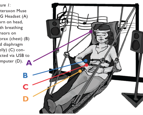 Sonic Cradle, bio and neurofeedback
