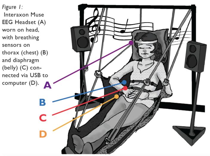 Sonic Cradle, bio and neurofeedback